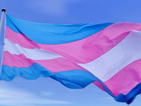 트랜스젠더 상징 깃발 사진